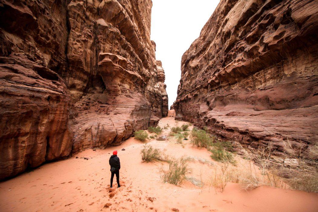Wadi Rum Desert. Emma Margrethe Bork, 23 år, Odense.